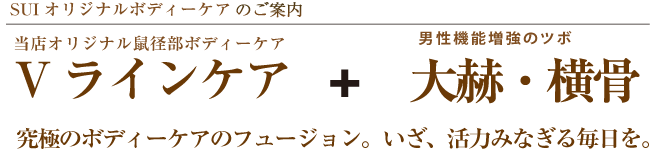 Vラインケア + 大赫・横骨